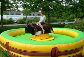 Rodeo-Bulle-2